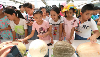 Primary school students given class at agricultural demonstration base in Qingdao