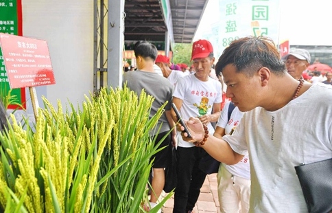 Changchun Int'l Agriculture Foodstuff Expo concluded