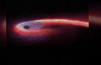 First image of a black hole is almost ready